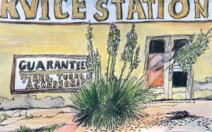 Muffy-Clark-Gill-watercolor-sketch